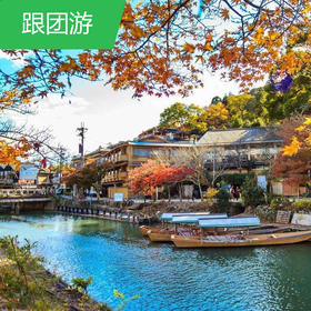 【日本】爽游日本东京/富士山/京都/大阪7日游