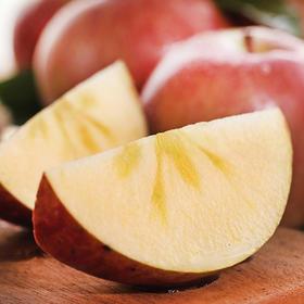 【新鲜到货】新疆阿克苏红旗坡冰糖心苹果9斤装  10斤装