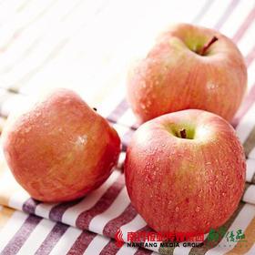 【香甜酥脆】阿克苏苹果 果径85-90mm 单果190-220g左右