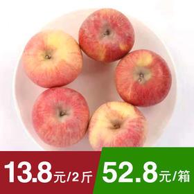 【香甜酥脆】阿克苏苹果 果径75mm 单果190-220g左右