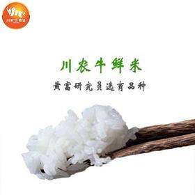 川农牛鲜米(批发)