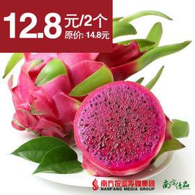 【清甜多汁】越南进口 红心火龙果 单果约350g  2个