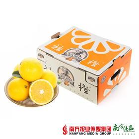 【多规格可选】云南 褚橙  毛重10斤/箱