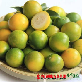 【脆甜可口】桂林阳朔脆皮金桔 中果 单果15-20g  2斤±1两