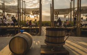 """【全美活动】阿根廷""""自然风""""葡萄酒品鉴(早鸟票:限时买一送一)"""