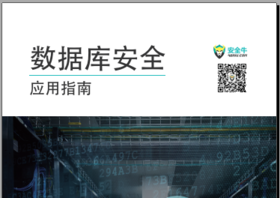 2017-2018数据库安全应用指南