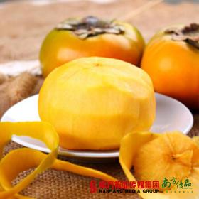【脆甜可口】台湾甜柿  约180g/个  2个