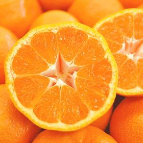 吃橘带皮,天下一奇【临海(涌泉)蜜桔】