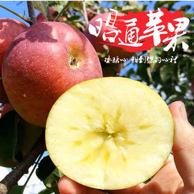 云南昭通丑苹果 野生冰糖心脆甜红富士苹果新鲜水果带箱5斤包邮
