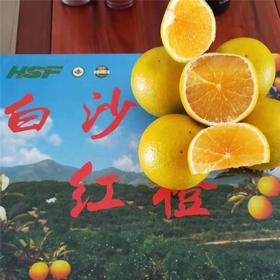 「海垦」红心橙1箱-龙江农场公司的红心橙
