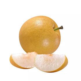 韩国冰糖秋月梨,一件10枚果,9斤左右