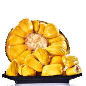 泰国菠萝蜜新鲜水果波罗蜜