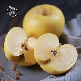 精选 | 烟台黄金奶油富士苹果 自然成熟后香甜多汁 皮薄如纸  口感脆甜 4.8-5斤装