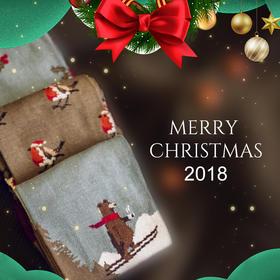CORGI 圣诞款 特供  礼盒 森林小熊 (男款3双)