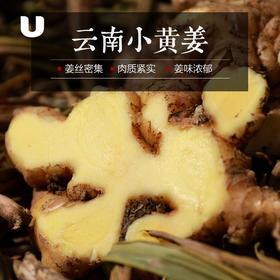 现挖云南农家小黄姜,无硫熏,纯净无农残,月子姜新姜,姜香浓郁,够辣劲足