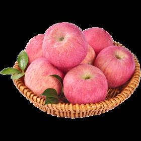 洛川苹果一盒6颗装