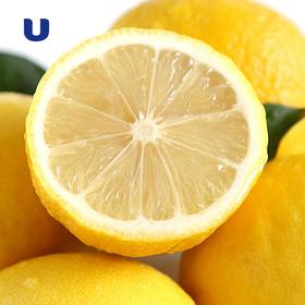 四川安岳新鲜黄柠檬1斤包装 现摘现发 酸爽多汁