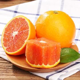 四川塔罗科血橙现摘应季新鲜水果精选大果10斤装
