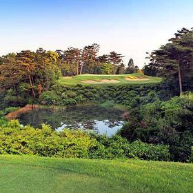 NO.21 日本广野高尔夫俱乐部Hirono Golf Club