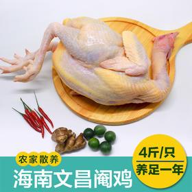 「文昌」传味文昌鸡(一年阉鸡)/4斤一只-海南传味文昌鸡产业公司的扶贫产品