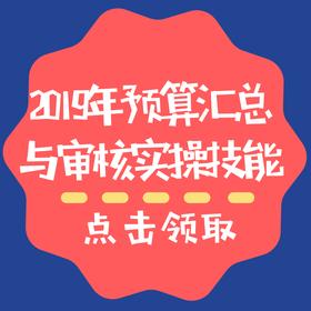 2019年预算汇总与审核实操技能