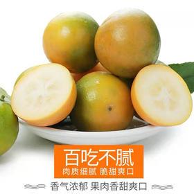 【现摘现发】广西融安金桔5斤 新鲜水果滑皮小橘子脆皮批发包邮