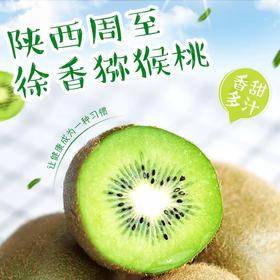陕西周至徐香猕猴桃6斤 新鲜当季水果绿心奇异果弥猴整箱批发包邮