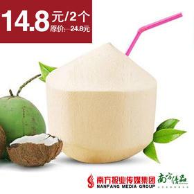 【清甜解渴】泰国椰青  约1.8斤/个  2个