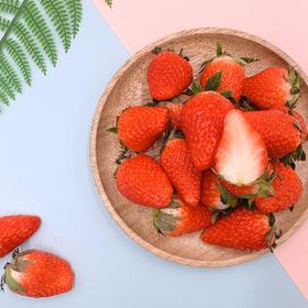 优选丨新鲜蜜莓 草莓 香甜味美 零农残 现摘现发 2斤精装  顺丰包邮 (东北新藏蒙琼不发)