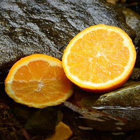 【买5斤送4斤】湖南麻阳冰糖橙  皮薄肉多 果小汁甜  实发9斤(单果 60-70mm)包邮