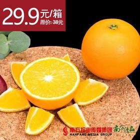 【最好吃的冰糖橙】永兴特级冰糖橙 礼盒装 约5斤/箱 1箱
