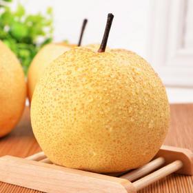 宁陵酥梨 | 原产地直发 含糖量高达15%以上