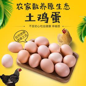 南山自家散养土鸡蛋营养健康家家必备(市内包邮,其余地区不发货)