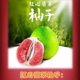 「儋州」大皇岭柚子-儋州大皇岭农业开发中心的扶贫柚子