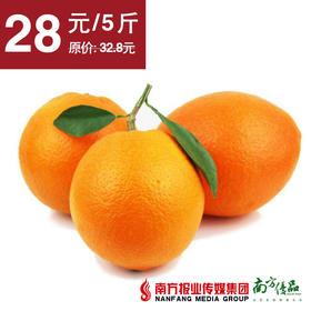 【香甜多汁】江西赣南脐橙  果径70-80mm 5斤±3两