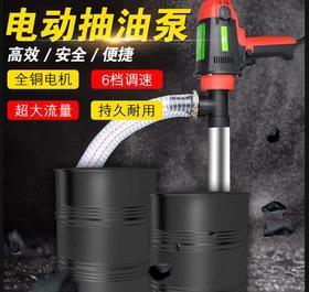 【抽油泵】手提式大功率电动油泵220V油桶泵柴油泵抽油器