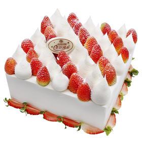 草莓季蛋糕 |「冬日恋歌」