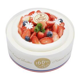 草莓季蛋糕 |「小莓好」