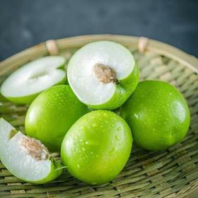 福建牛奶枣大青枣水果5斤苹果枣