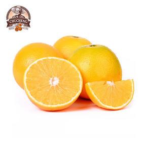 褚橙——一位匠心老人种的冰糖橙