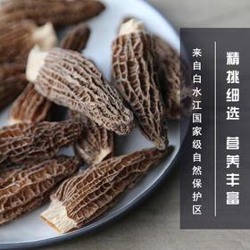 剪柄羊肚菌5-7CM特级半野生菌干货高海拔羊肚菇50g农家食用菌包邮