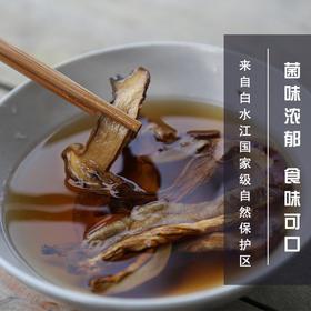 牛肝菌 保护区野生菌A级货干货白牛肝菌甘肃特产蘑菇菌煲炖汤100g