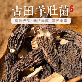 古田精选羊肚菌 山珍干货 煲汤食材 古田农家特产 松茸伴侣 250g包邮