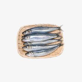 日本鲐鲅鱼,每袋3片,只要10元出