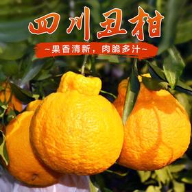 现摘 正宗四川不知火丑八怪丑柑新鲜水果丑桔丑橘丑桔子5斤装、8斤装