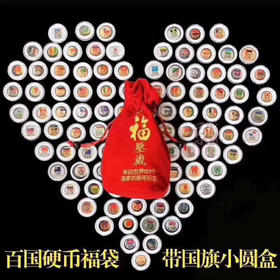 来自一百个国家的一百枚硬币的新年祝福 【豪华版】