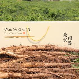 温县垆土铁棍山药 营养丰富 口感细腻 礼盒装4.5斤(55-60cm)包邮