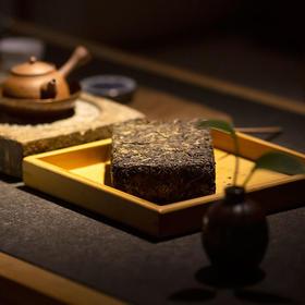 紫云茯 特级安化黑茶