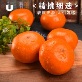 广西沃柑 蜜橘子桔子新鲜水果饱满多汁