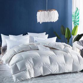 【被芯】 简约舒适全棉长城格鹅绒被  - 缔歌纺织